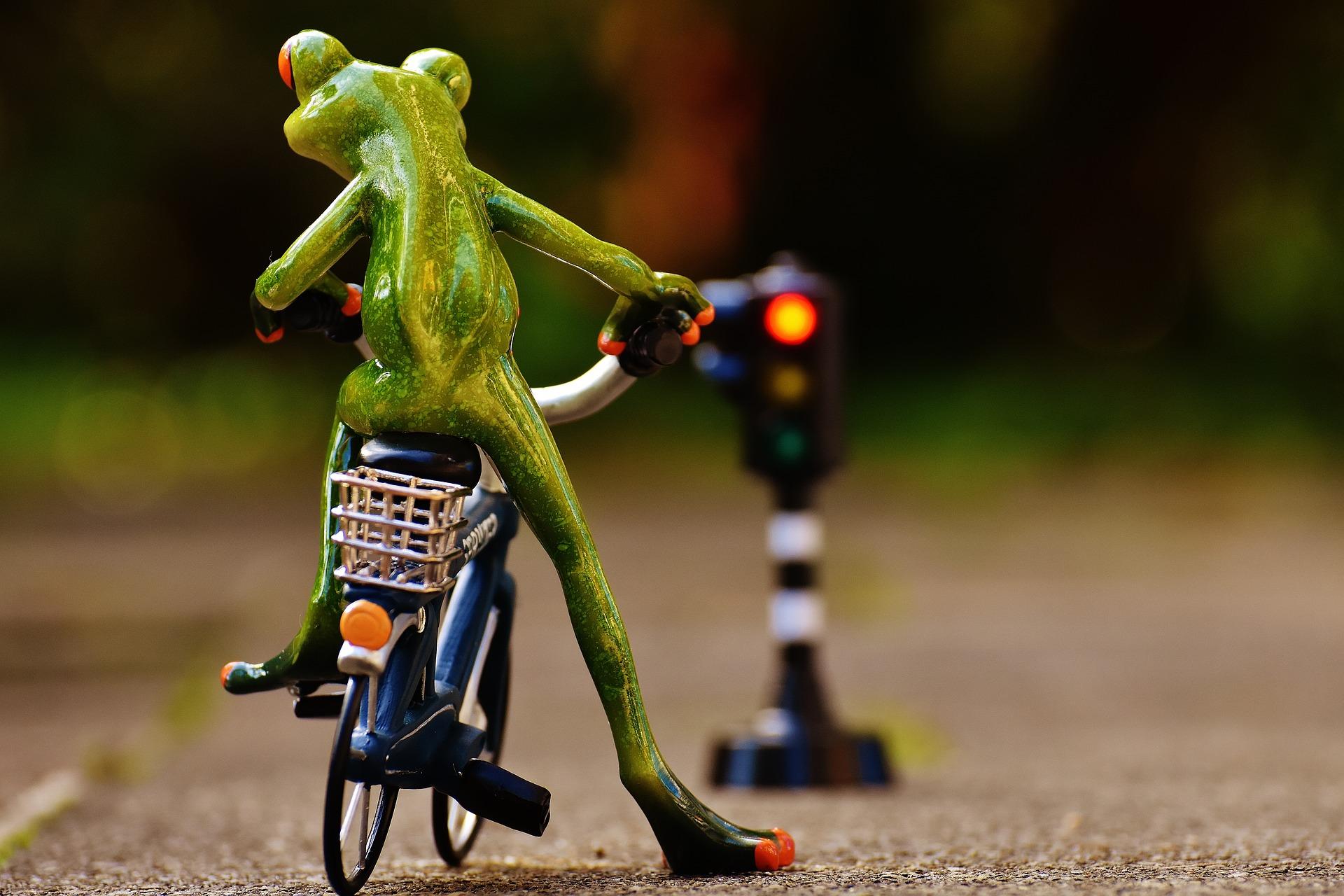 Le code de la route pour les cyclistes
