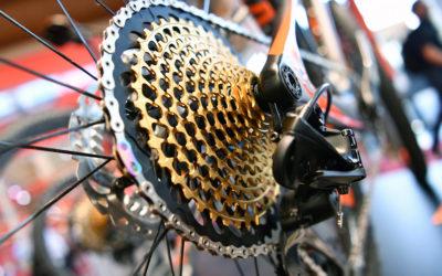 Le business du vélo monte en puissance ? Tout savoir