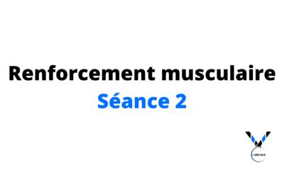 Renforcement musculaire séance 2