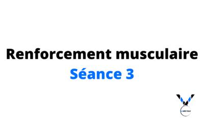 Renforcement musculaire séance 3