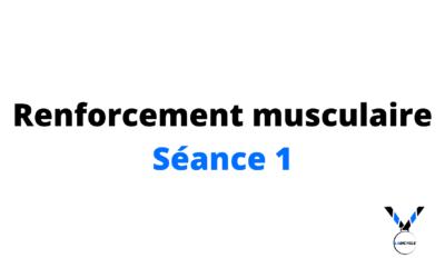 Renforcement musculaire séance 1